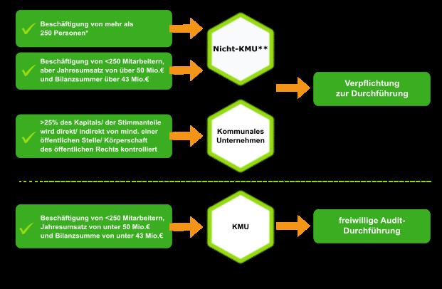 Grafik: Übersicht bezüglich der Energieauditverpflichtung: Nicht-KMUs und kommunale Unternehmen sind zu einem Energieaudit verpflichtet; KMUs können ein Audit freiwillig durchführen
